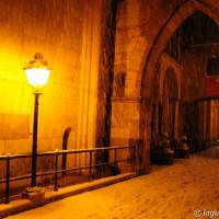 Duomo di Modena - 36