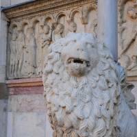 Duomo di Modena - 43