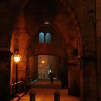 Duomo di Modena - 45