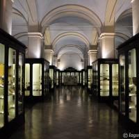 Musei Civici Modena - 27