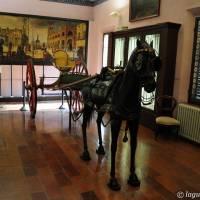 Musei Civici Modena - 4