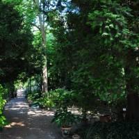 Palazzina Giardini e Orto Botanico Modena - 12
