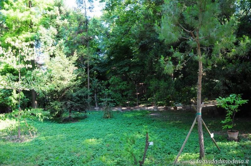Palazzina Giardini e Orto Botanico Modena - 15