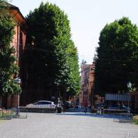 Palazzina Giardini e Orto Botanico Modena - 17