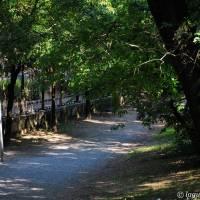 Palazzina Giardini e Orto Botanico Modena - 20