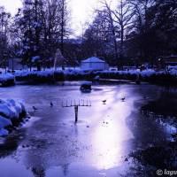 Palazzina Giardini e Orto Botanico Modena - 5
