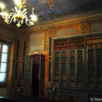 Palazzo d'Aragona Coccapani Modena - 12