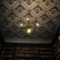 Palazzo d'Aragona Coccapani Modena - 16