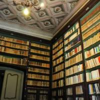 Palazzo d'Aragona Coccapani Modena - 17