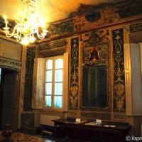 Palazzo d'Aragona Coccapani Modena - 23