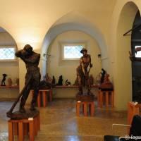 Palazzo dei Musei (Musei) Modena - 14