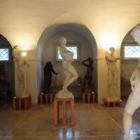 Palazzo dei Musei (Musei) Modena - 15
