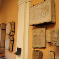 Palazzo dei Musei (Musei) Modena - 17