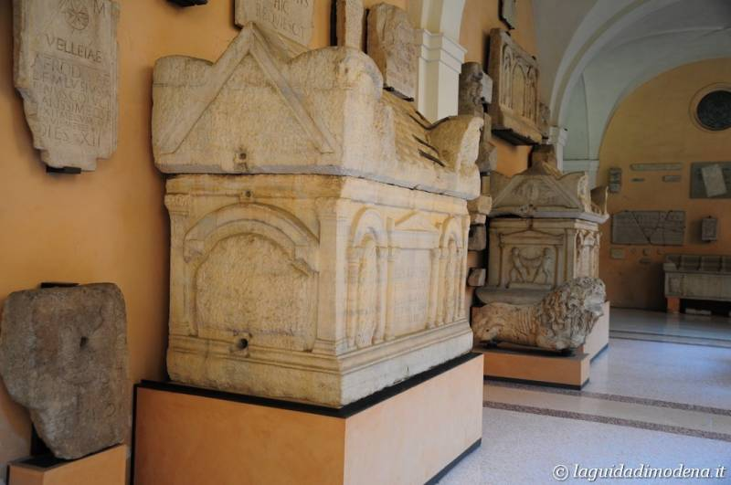 Palazzo dei Musei (Musei) Modena - 20