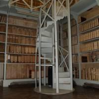 Palazzo dei Musei (Musei) Modena - 34