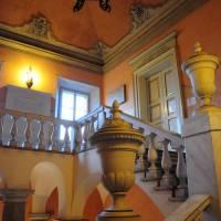 Palazzo dei Musei (Palazzo) Modena - 7