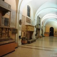 Palazzo dei Musei (Palazzo) Modena - 9