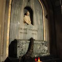Santa Maria della Pomposa Modena - 9
